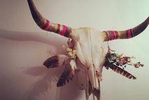 Cow skull decor