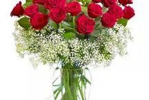 Send Flowers to Patiala / We at flower aura, cater to accomplish your demands and provide best and cheap online flower delivery to Patiala, so you can deal with us now and send flowers to Patiala to your closed ones. Send cheap online flowers to Patiala now.