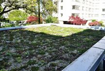 Green Roof Design / Green roofs offer many environmental benefits, whether they are incorporated into a private residence, office building or industrial facility. Reduced air pollution and greenhouse gas emissions are just some of the more notable perks.