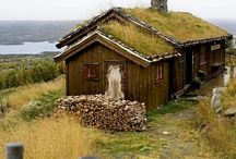 Norwegian Roots / by Tamie Pitzer