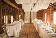 Wedding/ Reception Decor / by Caroline Whitmore