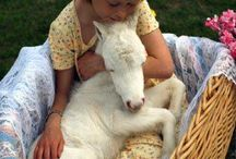 KIDS WITH ANIMALS
