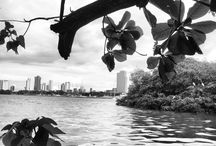 Recife de Encantos / Um pouco dos encantos da Veneza brasileira, Recife de seus rios, suas pontes, praças e arquitetura.