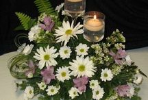 """Daisy Wedding / Love those daisies!  Pink, white, lavender . . so affordable and SO beautiful!!  Bridal bouquets, corsages, boutonnieres, centerpieces and other wedding decorations  - with everything coming up """"fresh as a daisy""""!"""