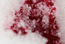 Blut , Kunst