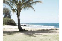 Hawaiian Seascape Artwork