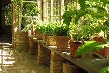 GREENHOUSE Inside / Greenhouse ideas from around the world. I try to pin photos showing practical ideas from real greenhouses, nothing rotten and falling down or too obviously staged for the picture. Once in a while I pin a show house greenhouse.