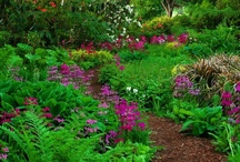 Garden Paths & Walkways / Be inspired by these garden paths........Take a walk with me down a garden path / by About the Garden magazine