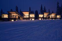 ski architecture