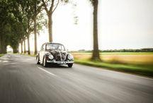 Beetle 1961