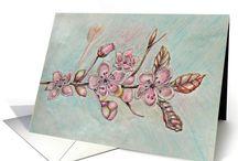 Cherry Blossoms Abound