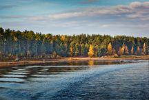 Уникальная природа Весьегонского края / Живописные леса, зеркальная гладь Рыбинского водохранилища, уникальная природа Весьегонского района
