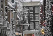 Winter / The winter scenery