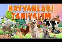 Hayvanları Öğreniyorum - Hayvan Sesleri - Hayvanları Tanıyalım | Eğitici Çocuk Videoları