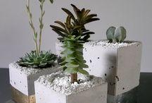 Concrete/tins
