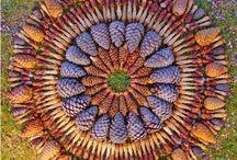 Patterns, Textures , Color & Light / by Lynn Eggertsen