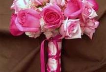 Pink n navy