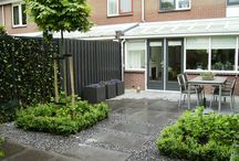 petra garden