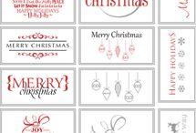 Winter & Christmas Ideas / by Amy Lucas