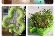 Easter, St Patricks Day, Chinese New Year