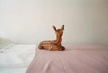 deer / by Yael Shinkar