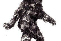 Bigfoot Junkie Board / by Robyn Crongeyer