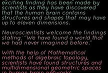 scintst found multy dimntional world in our brain