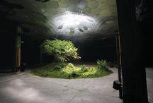 Amazing Light Art / by Verilux, Inc.