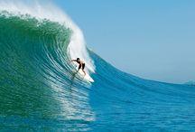 Surf + Waves