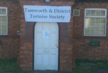 Tamworth and District Tortoise Society / Photo's and details of events held by the Tamworth and district Tortoise Society.
