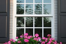 CURB APPEAL / by Darlene Greg