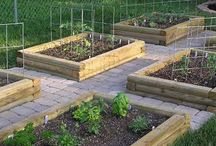 Yard/Garden/Farm