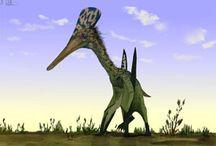 Dinosortof