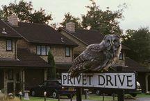 4 Privet Drive,Little Whinging,Surrey
