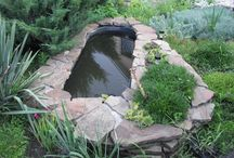 Pond creations / Water features