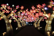 Lantern Festival: Magic Reimagined / Celebrating the Garden's ongoing botanical research in China, 22 all-new sets crafted from silk and steel once again offer visitors from around the world the opportunity to experience an event rarely staged outside of Asia.