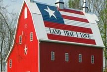America the Beautiful / God bless America! / by Jessica Nicholson