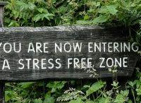 Stress Free Zone / by Patti Umlauf