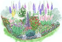 Garden Plans  / by Kelly Rita Birtch