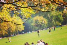 L'automne à Lyon