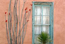NEW  MEXICO / by Jane Barreda