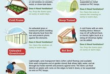 *♥ Food Growing ♥ / This board is dedicated to QUALITY information & advice on growing food both indoors & out. Any off topic Pins will be deleted. No SPAM or anything inappropriate.