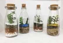 Jardinagem criativa / As plantas tornam os ambientes mais bonitos e mais alegres, aposte nelas com nossas ideias criativas!