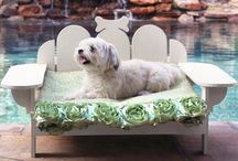 Creature Comforts / Stylish collection of pet essentials.  / by Joss and Main