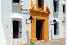 Cortijos andaluces,casas rústicas y casas de pueblo / Pueblos andaluces, arquitectura, etnografía.....