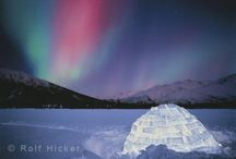 Northern Lights / by Judith Cameron
