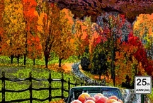 Vermont Fall Foliage / by Lang House on Main Street Bed and Breakfast