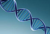 Good science vs. pseudoscience