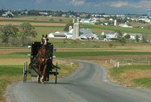 Amish / by Helen Walker
