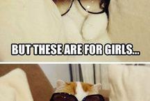 Ahhhh cats...